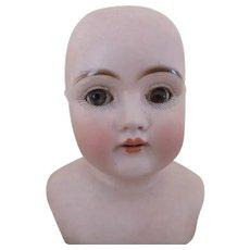 Darling Kestner DEP 154 Shoulder Doll Head