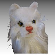 Steiff Persian Cat - Diva - For Your Dolls Companion