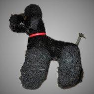 Black Steiff Poodle