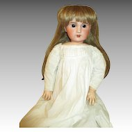 "Angelic 24"" French SFBJ Doll - Arresting Brown Eyes - Gorgeous Dress"