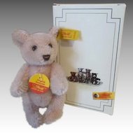 "Little Steiff 4"" Cub Bear in Original Box"