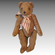 Antique Mohair Humpback Teddy Bear