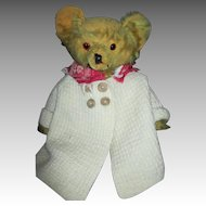 Loved Mohair Antique Teddy Bear