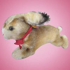 Vintage Steiff Hoppy Bunny
