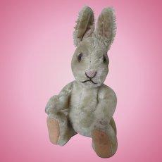 Adorable Steiff Bunny