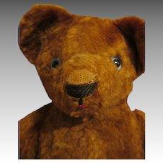 Much Loved Mohair Teddy Bear