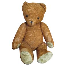 Antique Mohair Teddy - Very Much Loved