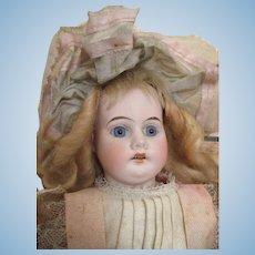 All Original Antique Bisque Head Doll