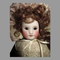 "Sweet 14.5"" French Bisque Head Doll"