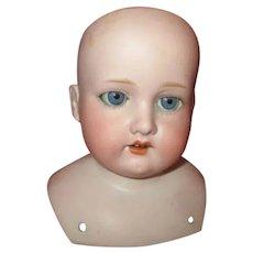 Beautiful Antique Bisque Shoulder Head