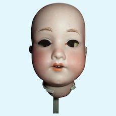 Antique Bisque German AM 390 Socket Doll Head
