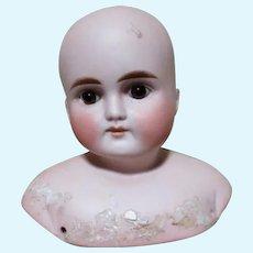 Antique Kestner Turned Shoulder Head