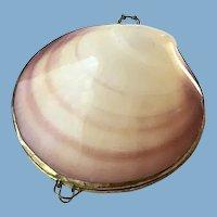 Natural Seashell Case