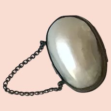 Mother of Pearl Chatelaine Purse