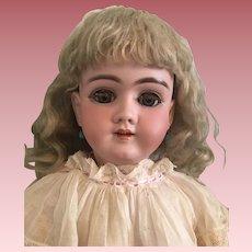"""Antique Bisque Heinrich Handwerck 14/99/DEP 26"""" Bisque Doll"""