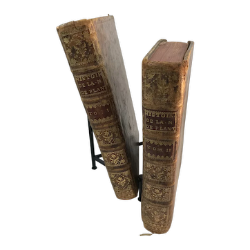 Royal Plantagenet History 2 Volume Set of Books by David Hume Circa 1765