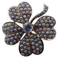 Four leaf Clover Edwardian 14k gold seed pearl diamond pendant brooch
