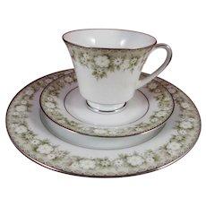 Noritake Princeton 6911 Trio - Cup, Saucer, Plate