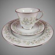 Noritake Savannah 2031Trio - Cup, Saucer, Plate