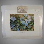 Signed Artist Print Spring Medley Kathleen Chaney Fritz