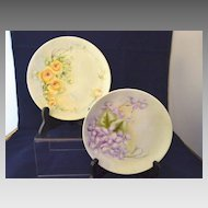 Two Lovely Floral Hand Painted  Plates 6 Inch Size