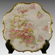 Limoges China Porcelain Serving Dish