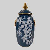 Pate Sur Pate Porcelain Vase