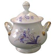 Ceramic Covered Sugar Bowl