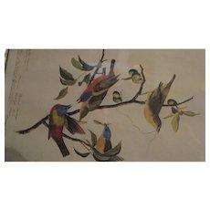 Vintage Audubon Print in 19th C Wooden Frame