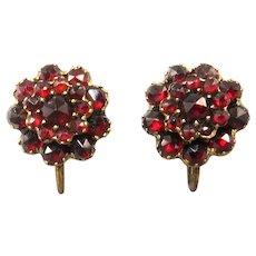 Bohemian Garnet Flower Cluster Earrings Gold Over 835 Silver