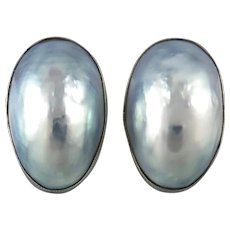 Silver Gray Blue Nautilus Shell Sterling Silver Screw Back Earrings