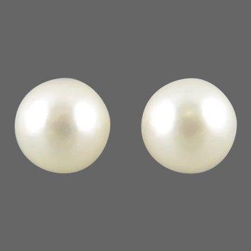 Akoya Pearl 14K Gold Fill Stud Earrings Cultured Pearls