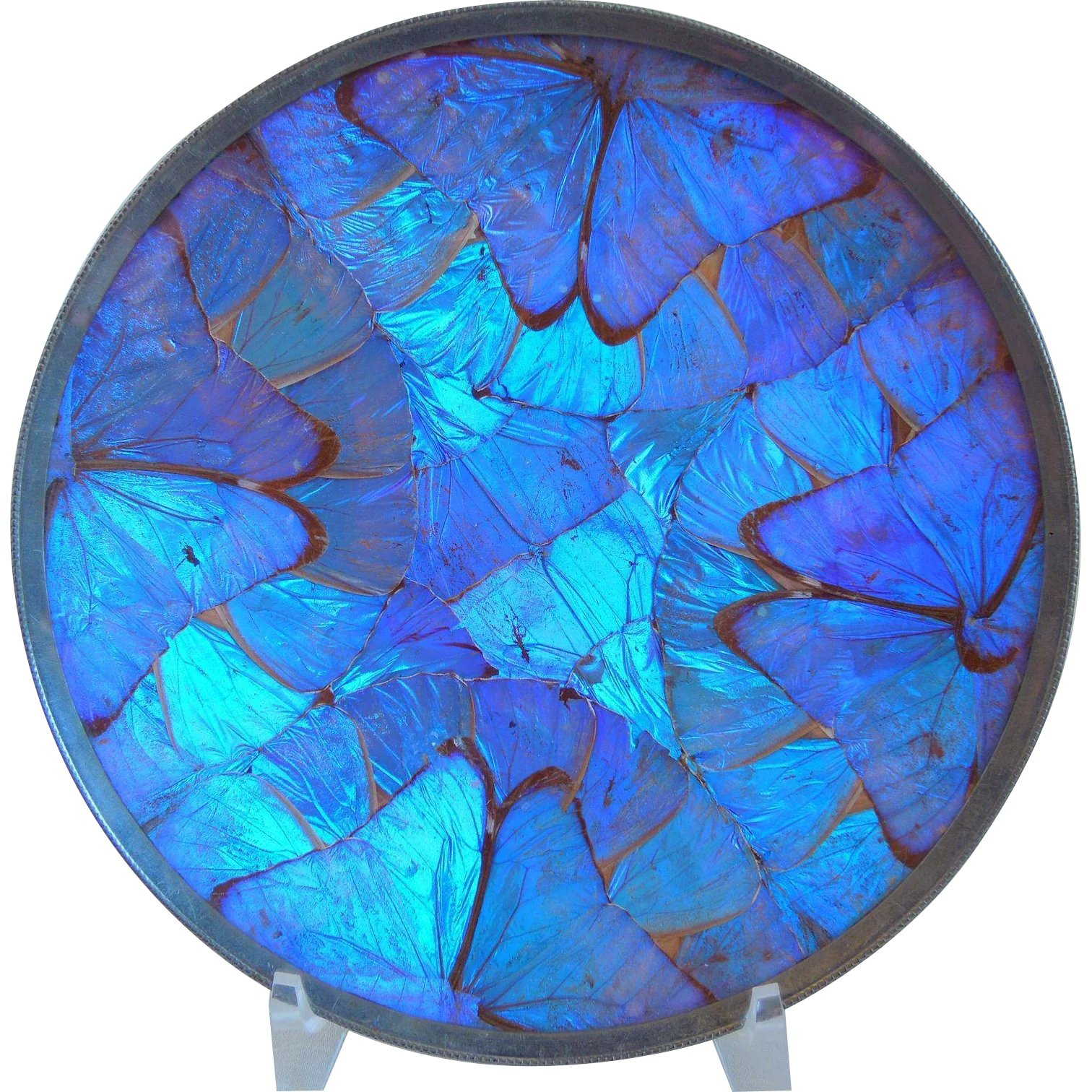 78 1960/'s Made in Brazil Vintage Blue Morpho Butterfly Wing Pendant