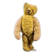 "Steiff-Like Bear 16"" Tall Darling Jointed Mohair Golden Bear!"