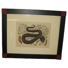 Original 18th Century Mark Catesby Water Moccasin Print