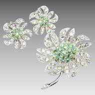 "Sarah Coventry ""Mountain Flower"" Brooch earrings Set"