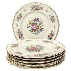 Stunning Set (6) Rosenthal Floral, Gold Service Plates U.S. Zone