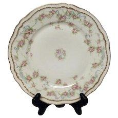 Lovely Theodore Haviland Schleiger 340 Dinner Plate