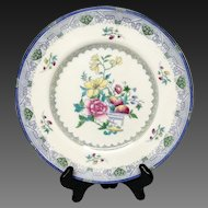 Lovely Royal Doulton Robert Allen Dinner Plate #Ra 9653