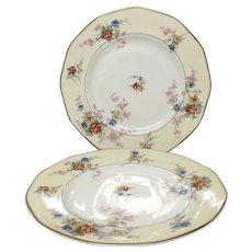 "Pair (2) Theodore Haviland France ""Jewel"" Dinner Plates"