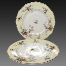 "Pair (2) Theodore Haviland France ""Jewel"" Luncheon Plates"