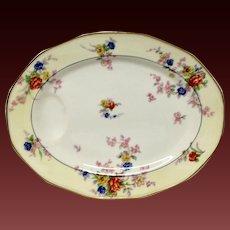 "Theodore Haviland France ""Jewel"" Small Oval Platter"