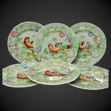 """Set (6) Exotic and Rare Spode """"Parrot"""" Salad or Luncheon Plates"""