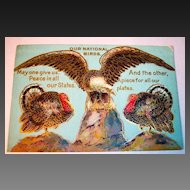 Thanksgiving National Birds Postcard, Eagle, Turkey Unused