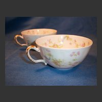 """Haviland """"Princess"""" Schleiger 57B Pair of Cups Only"""