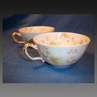 "Haviland ""Princess"" Schleiger 57B Pair of Cups Only"