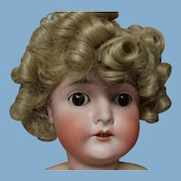 Shirley Temple, size 11-12 wig of Modacrylic fiber. new
