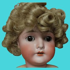 Shirley Temple, not used prior, size 11-12 wig of Modacrylic fiber. new