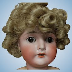 Shirley Temple, size 11-12 wig of Modacrylic fiber. new