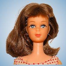 Barbie Vintage Brunette Japanese Exclusive Francie Doll TLC